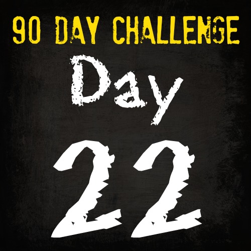 Free HIIT Mamas 90 Day Fitness Challenge- DAY 22