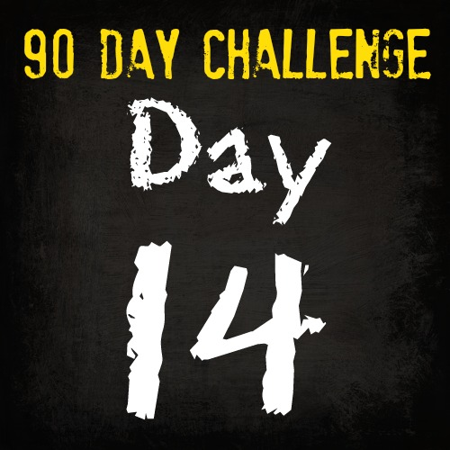 Free HIIT Mamas 90 Day Fitness Challenge- DAY 14